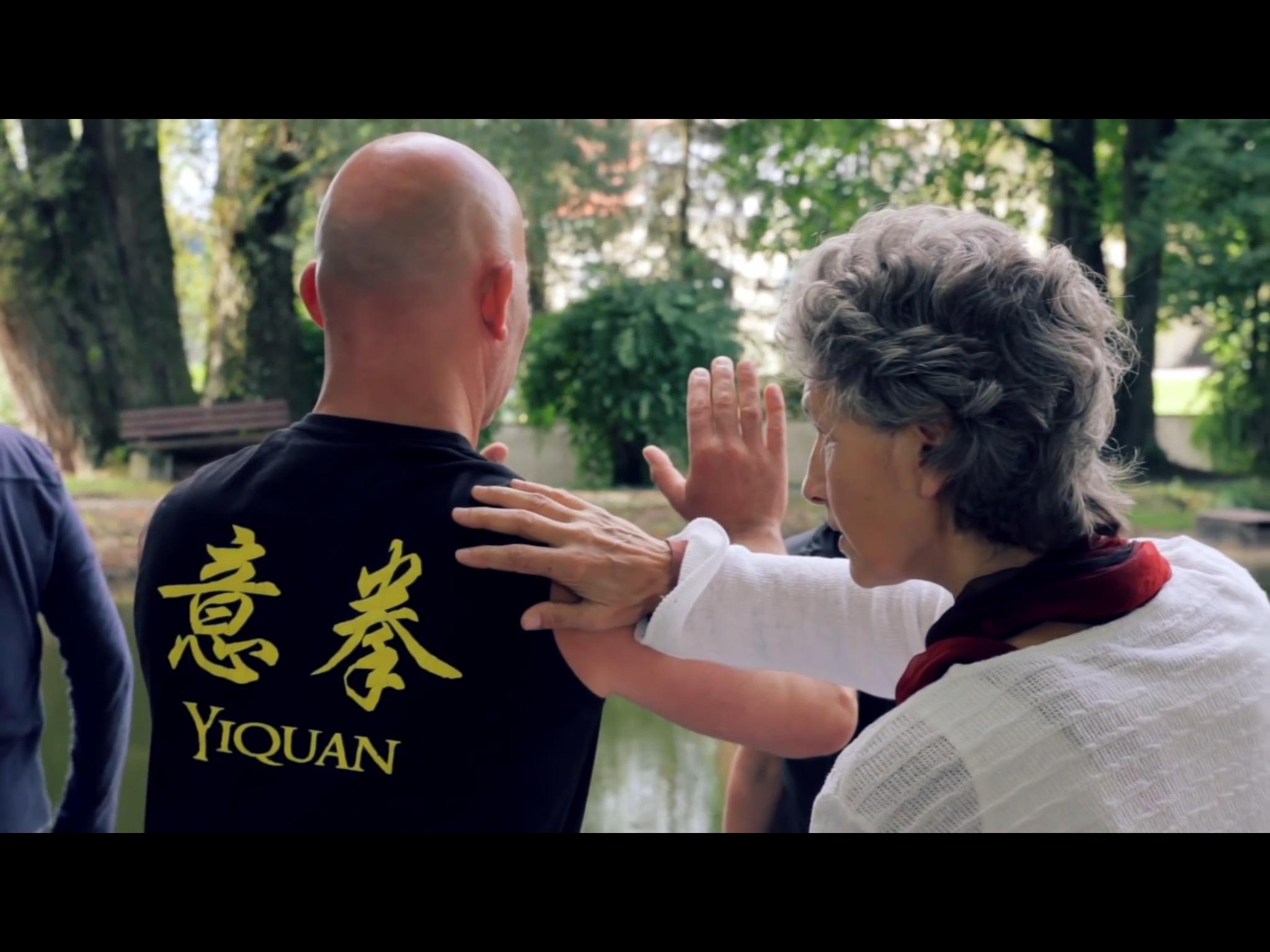 Kurse der Chen-Akademie